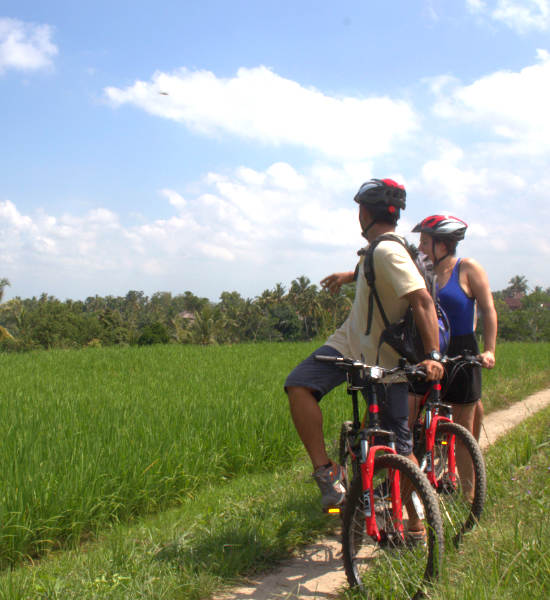 Cycling with Guide